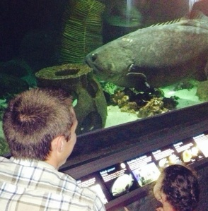 "Checking out the Giant Mr. Grouper with ""Cousin Stevie"""