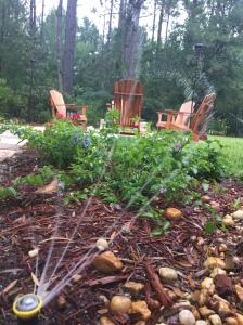 Elusive Pleasure: Sprinklers in the Garden of Life at JoanTWarren.com